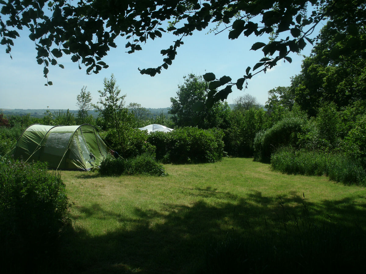 Secluded camping pitches - Northlodge eco-camping